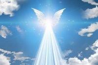 37513962 - angel winged
